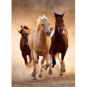 PUZZLE RUNNING HORSES 1000 PZAS